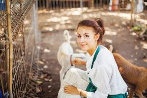 tierheilpraktiker schulen